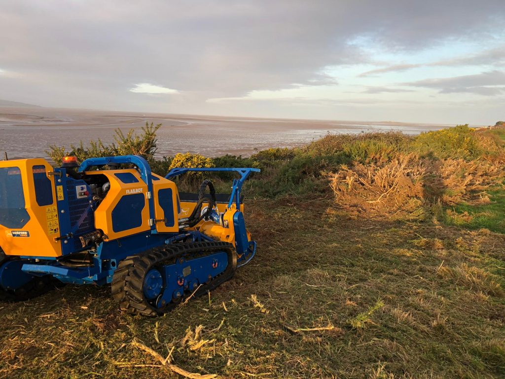 Flailbot Gorse Removal